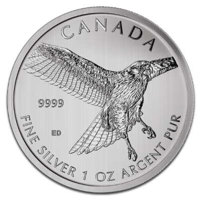 1 oz Red-Tailed Hawk Birds of Prey | Argent | 2015