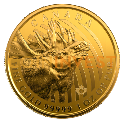 "1 oz Call of the Wild ""Gold Moose"" .99999 Gold Coin (2019)"