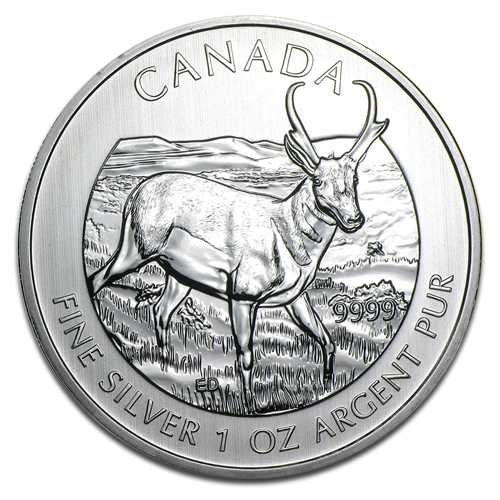 1 oz Kanadische Antilope Wildlife Serie | Silber | 2013