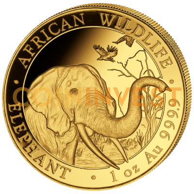 1 oz Somalie Èléphant | Or | 2018