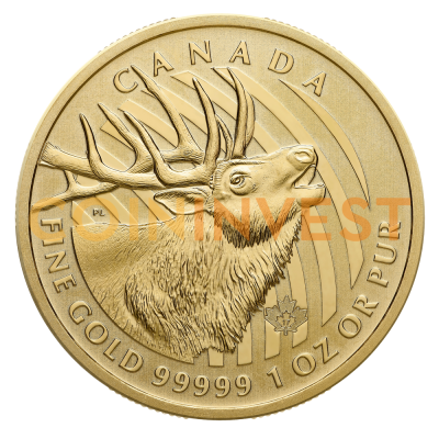 1 oz Call of the Wild El Alce | Oro 999.99 | 2017