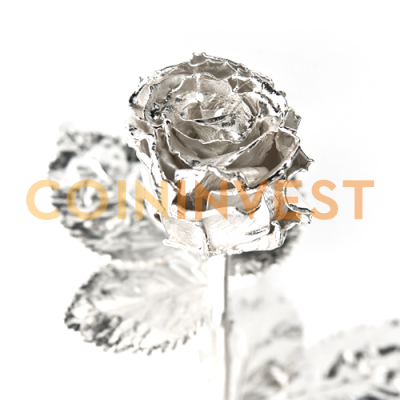 Real Rose | White Gold | plated | 30cm
